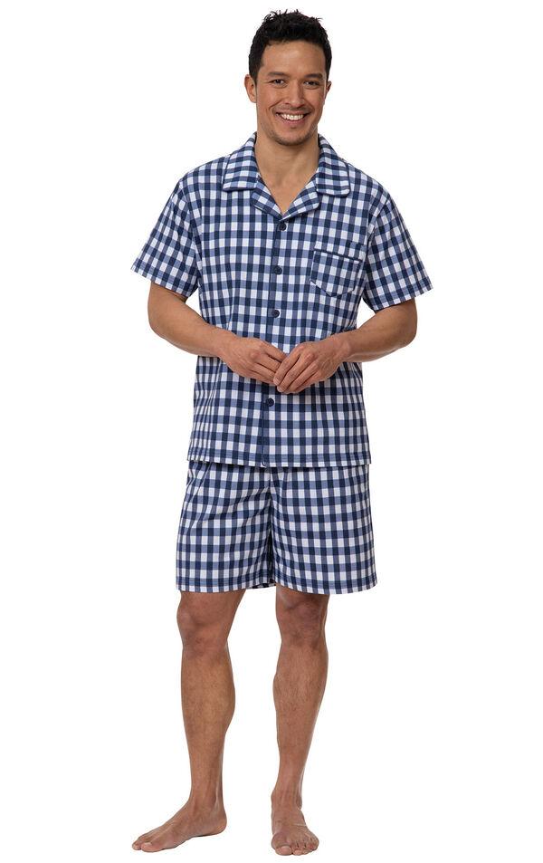 Model wearing Model wearing Blue Gingham Short Sleeve Button-Front Short Set for Men image number 0