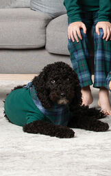 Dog laying on carpet wearing Green and Blue Classic Heritage Plaid Dog PJs - a Green thermal PJ with Plaid handkerchief image number 2