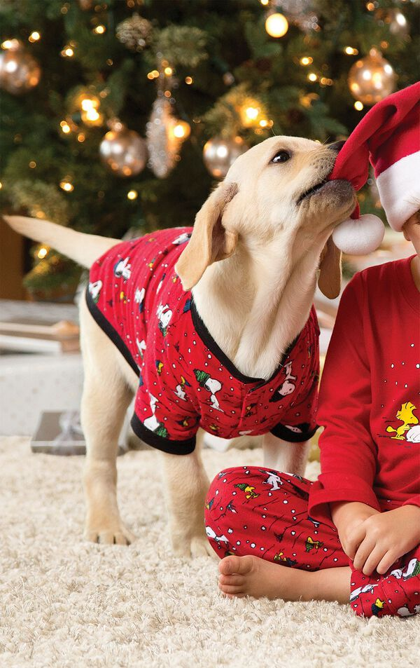 Dog wearing Red Matching Snoopy and Woodstock Pajamas, playing with boy image number 1
