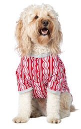 Model wearing Red and White Peppermint Twist PJ - Pet