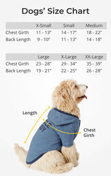 Relaxed & Cuddle Buddy Hoodie Matching Pet & Owner PJs image number 4