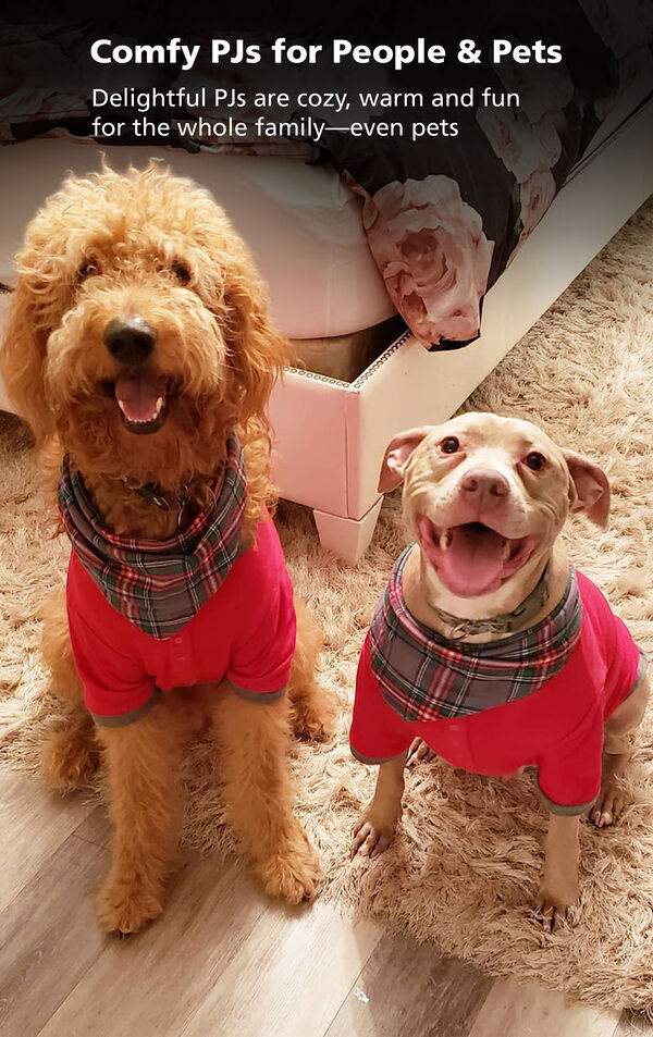 Two adorable dogs wearing matching Gray Plaid Pajamas - comfy PJs for people and pets! image number 2