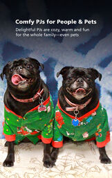 Two adorable dogs wearing matching Charlie Brown Dog Pajamas - comfy PJs for people and pets! image number 2