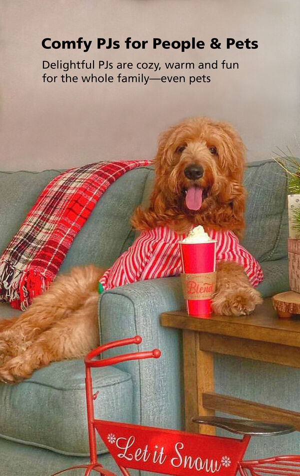 Big dog sitting on couch wearing Candy Cane Fleece Pajamas for Pets - Comfy PJs for People and Pets! image number 3