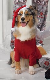 Dog wearing matching Red Thermal PJs and a Santa Hat for Pets image number 1