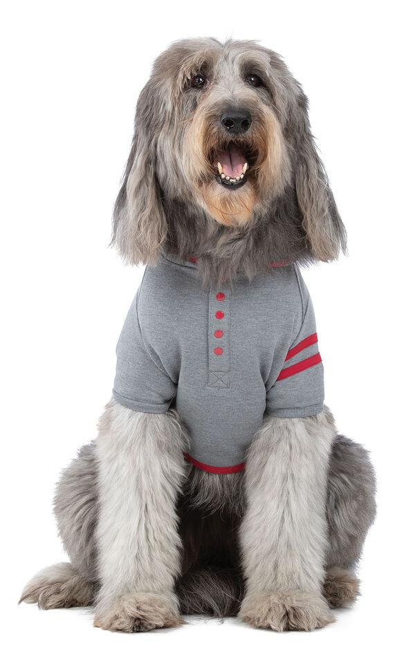Model wearing Gray Hoodie PJ - Pet image number 0