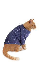 Model wearing Navy Blue and White Polka Dot PJ for Cats