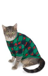 Cat wearing Red and Green Mickey Mouse Holiday PJs