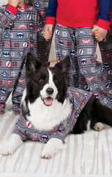 Dog laying on rug wearing red and blue Justice League pajamas for pets image number 1
