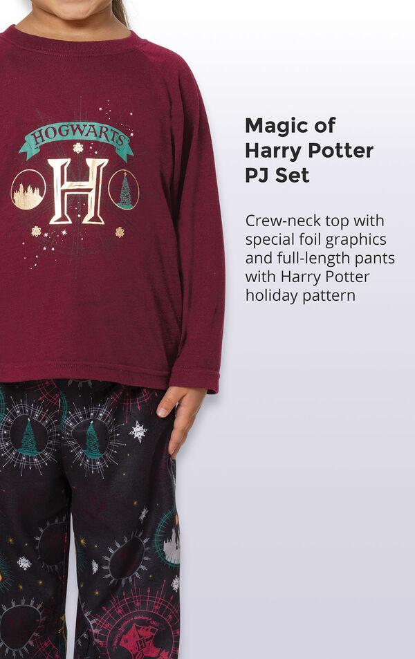 Harry Potter Boys Pajamas image number 3