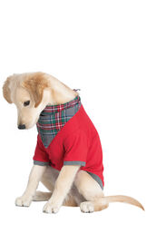 Model wearing Gray Plaid PJ - Pet