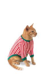 Model wearing Candy Cane Stripe Fleece PJ for Cats